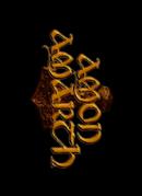 Amon Amarth - nášivka 3